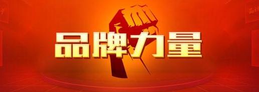 2016山东省企业品牌价值百强发布 东营三企业上榜