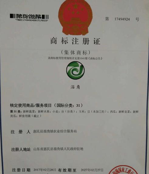 """""""淄角""""注册滨州市首件农产品集体商标"""