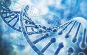 一起涉基因检测发明专利侵权案成功调解