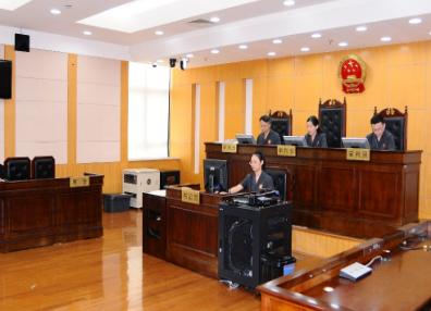 300萬!上海首例知識産權侵權懲罰性賠償案件一審落槌