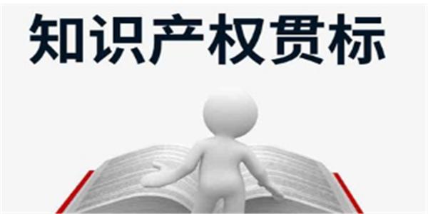 10万元,关于申报武汉市知识产权贯标奖励的通知!