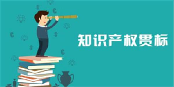 2020年陕西省知识产权贯标工作实施方案,贯标奖励50000元
