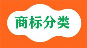 食用香精、香料属于国际商标分类的第几类注册商标?