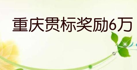 重庆两江新区:专利资助4万,贯标奖励6万,地理标志奖励50万
