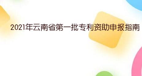 2021年云南省第一批专利资助申报指南