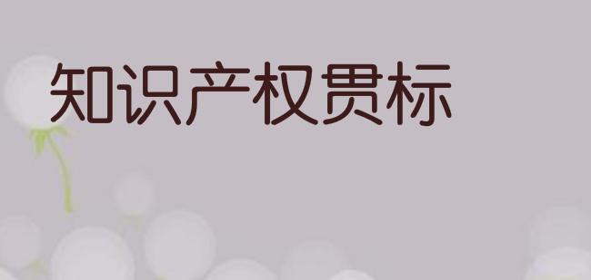 福建省龙岩市知识产权贯标奖励政策