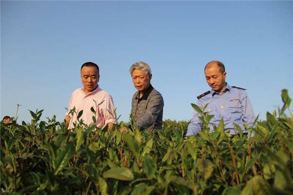 浙江省著名商标455件 溫州市商标注册量位居全省第二