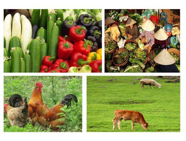 发展农业应该注册哪些商标?